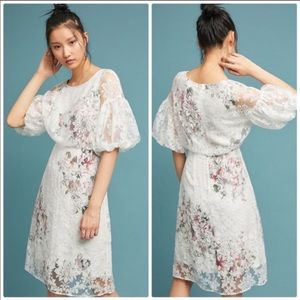 NWT Anthropologie White Guiana floral dress size 4